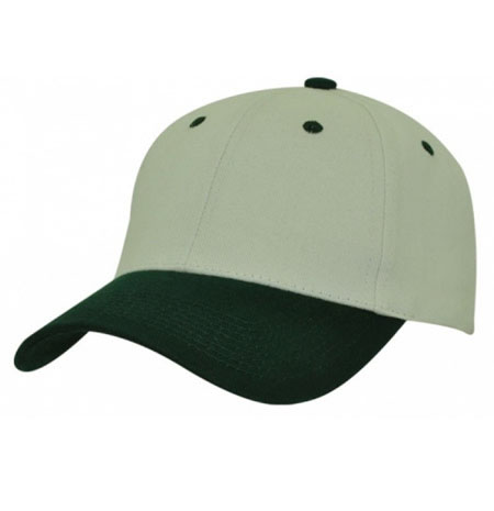 AH310 HBC Two-Tone Cap